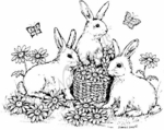 P3329 The Bunny Bunch