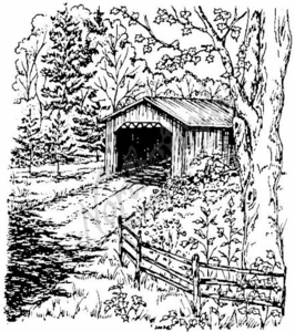 P3604 Covered Bridge