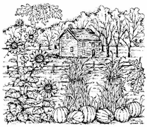 P3752 Fall House With Sunflowers, Cornstalks and Pumpkins