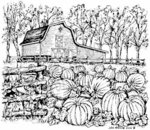 P4754 Barn and Pumpkin Patch