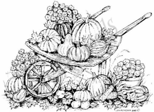 P6605 Gourd, Pumpkin and Fall Flower Wheelbarrow