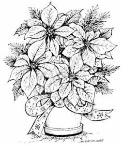 P6802 Pot With Poinsettia and Pine