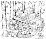 P8169 Wheelbarrow And Apple Basket In Woods