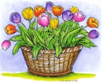 P8496 Tulips In Wicker Basket