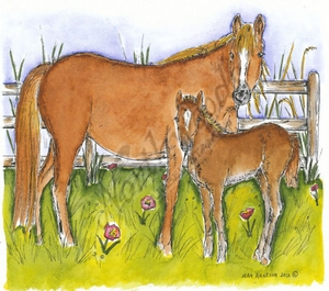 P8547 Mare And Foal By Wood Fence