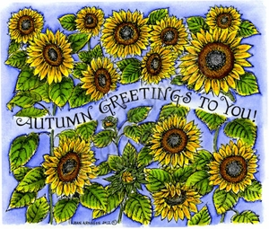 P8675 Autumn Greetings To You In Sunflower Field