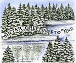 P8823 Winter Greetings To You In Spruce And Lake