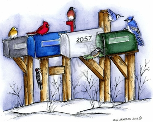 Winter Mailboxes With Winter Birds P8869