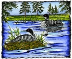 P9033 Loon On Nest In Deckled Frame