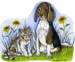 P9058 Beagle And Cat With Flowers