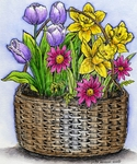 P9473 Spring Basket With Tulips And Daffodils