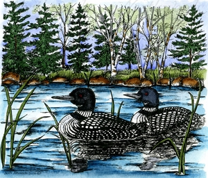 P9982 Loon Pair On Lake With Pines