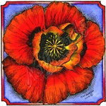 PP9457 Poppy Blossom In Notched Square