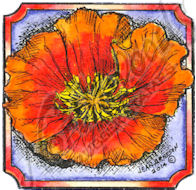 CC9454 Poppy Blossom In Small Notched Square