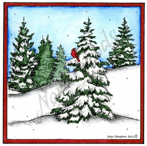 PP10162 Snowy Spruce Grove With Cardinal In Square Frame