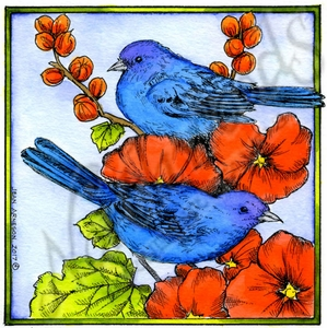 PP10179 Indigo Bunting Pair On Hollyhocks In Square Frame