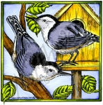 PP10199 Nuthatch Pair On Birdhouse In Square Frame