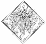 PP3767 Diamond Indian Corn