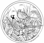 PP4958 Circle Pheasant Pair