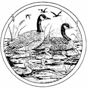 PP4962 Circle Geese Family