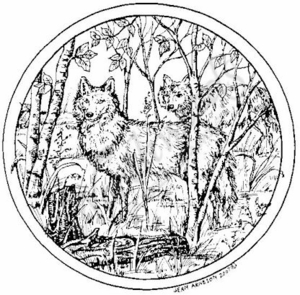 PP4968 Circle Wolves In Woods