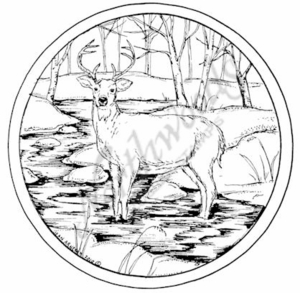 PP7682 Buck In Stream Circle