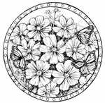 PP8002 Dotted Circle With Cosmos And Monarch Butterflies