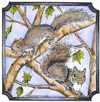 PP8539 Doug And Nora's Squirrels In Notched Square