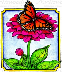 PP9931 Monarch On Zinnia In Notched Rectangle