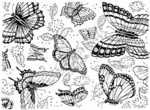 R1374 Butterfly Background Block