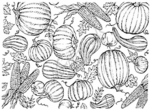 R2765 Bountiful Harvest Background Block