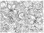 R3227 Lace, Lily and Rose Background Block