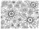 R3321 Gerbera Daisy Background Block