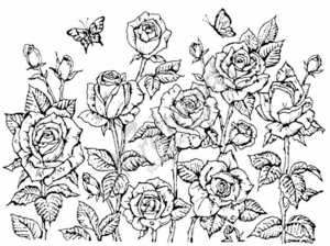 R3360 Garden Of Roses Background Block