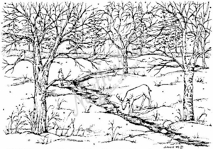 R3880 Deer, Cardinal and Bare Branched Trees By Stream
