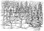 R4840 Winter Woodland Scene