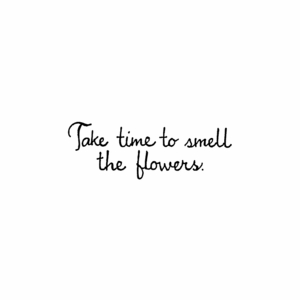 Take Time To Smell - BB01460