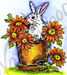 B9424 Tiny Bunny In Pot