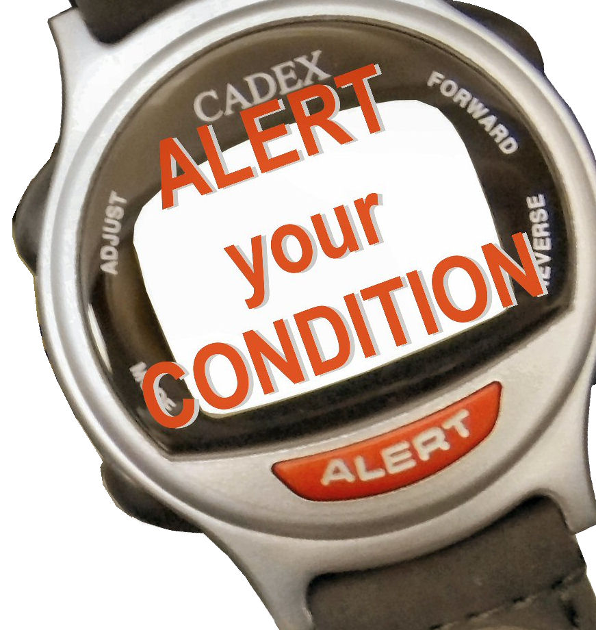 Alert Bracelet With Your Health Condition Color Silver Caduceus 942432 Looks Like A Normal Watch