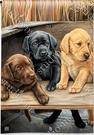 Garden Flag, Labrador Puppies, Black, Yellow, Chocolate