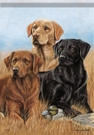 Garden Flag, Labradors, Black, Yellow, Brown, Pros