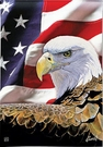 Garden Flag, Patriotic, Bald Eagle, American Flag, Spirit of Freedom