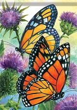 Garden Flag, Butterflies, Majestic Monarchs, Double Sided