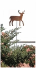 Lawn / Garden Stake, Deer, Rusted, Natural