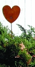 Lawn / Garden Stake, Heart, Rusted, Natural