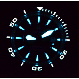BLUETECH MASTER LUME - Orange Model Only