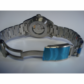 Bracelet with Deploy and Safety clasp + divers Extension