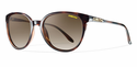 Smith Archive Cheetah Sunglasses Tortoise Carbonic Polarized Brown Gradient