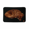 TechNiche Air Activated Heating Dog Pad, Powered by Heat Pax