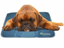 The Green Pet Shop Self-Cooling Pet Pads - Large